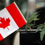 ¡Trudeau cumplió!...marihuana recreativa ya es legal en Canadá